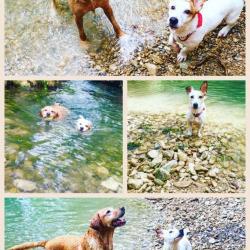 Levis avec sa copine Mouss à la rivière