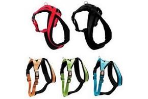 5 modeles de harnais pour chien