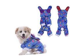 Chien en pyjama