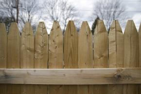 Les clôtures adaptées aux chiens : choix et achat