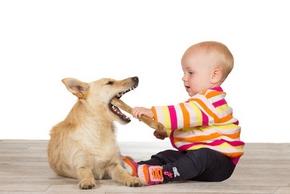 Enfant joue avec chien