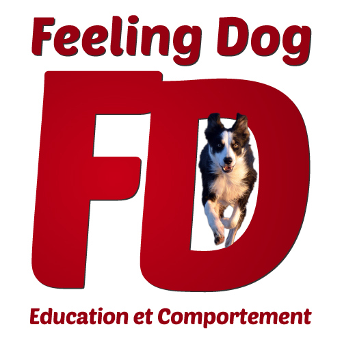 Feeling dog logo