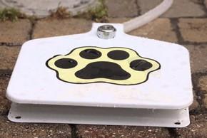 Fontaine pedal eau pour chien