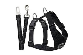 Harnais en nylon noir pour chien