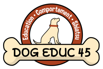 Logo dog educ 451