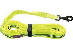 Longe elastique pour chien