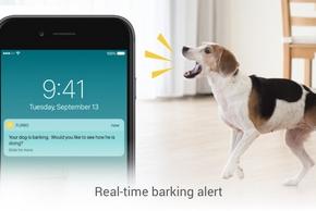 Telephone qui avertit qu un chien aboie