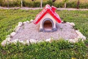 Tombe d un chien avec une maison rouge