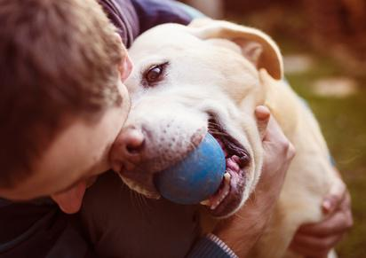 Activité de jeux avec son chien