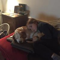 Comète, la beagle de la fille de Reno