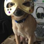 Havane avec son masque