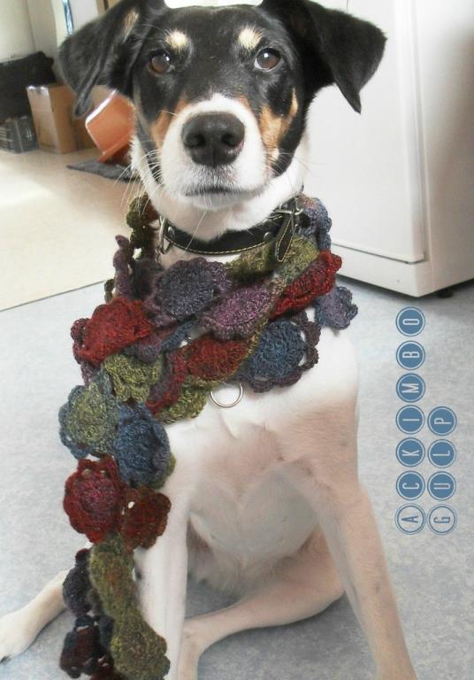 La jolie Scotty, chienne Fox Terrier de Sylvie