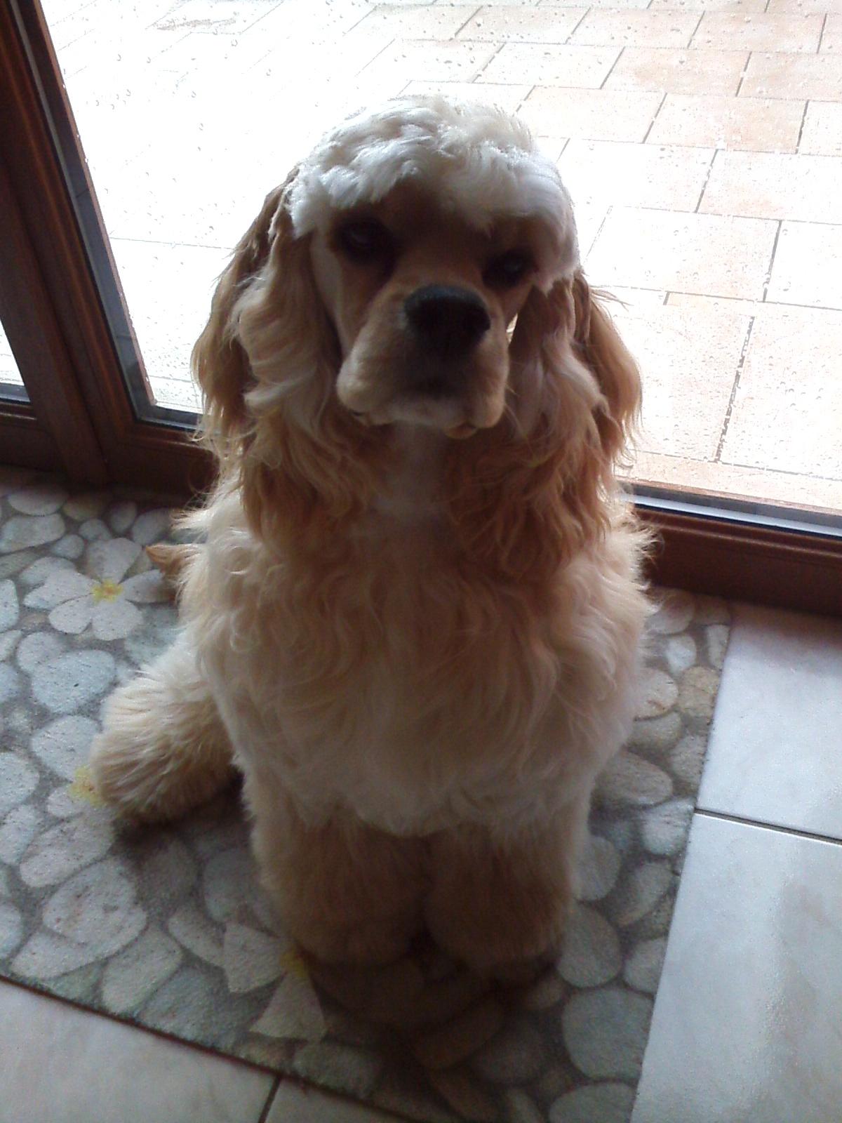 Léo a 3 ans
