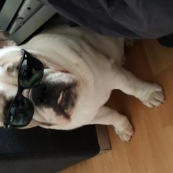 Maurice avec ses lunettes de soleil