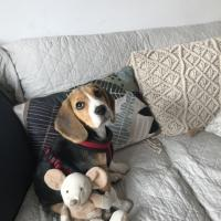 Poppy avec son doudou