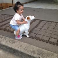 Snoopy, Jack Russel de 3 ans