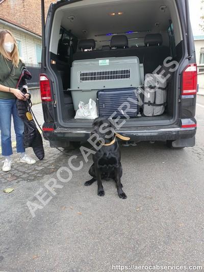 Aerocabservices taxi avec cage pour chien
