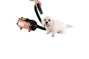 Chien qui se fait secher avec un sechoir pour chien