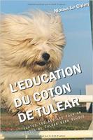 Tout Savoir Sur Le Coton De Tulear