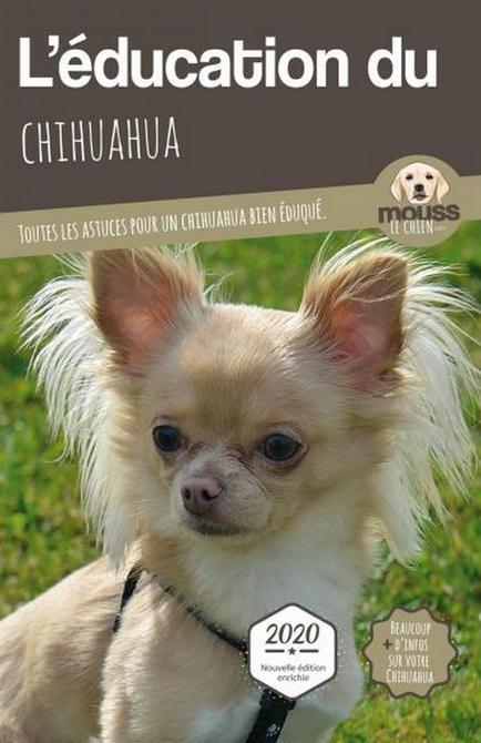 Education Chihuahua