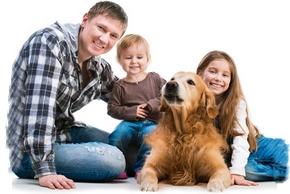 Faire garder chien famille