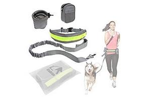 Harnais pour sport chien