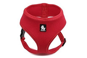 Harnais rouge pour petit chien