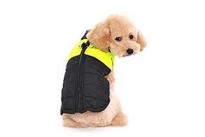 Harnais veste pour petit chien