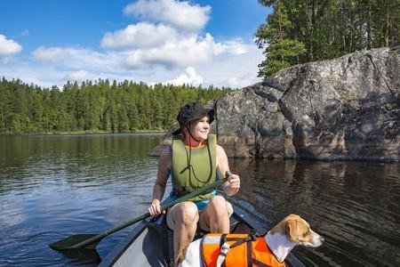 Jack russell canoe eau adobestock 262685940