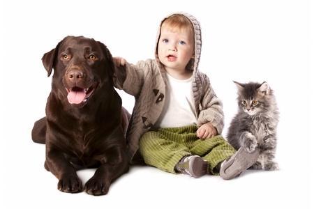 Labrador retriever enfant adobestock 50810070