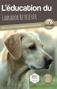 L'éducation du Labrador Retriever