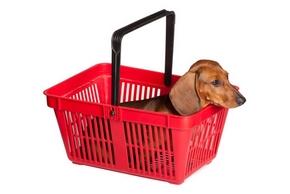 Panier chien pas cher