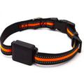 Collier avec balise GPS pour chien Active Media Concept